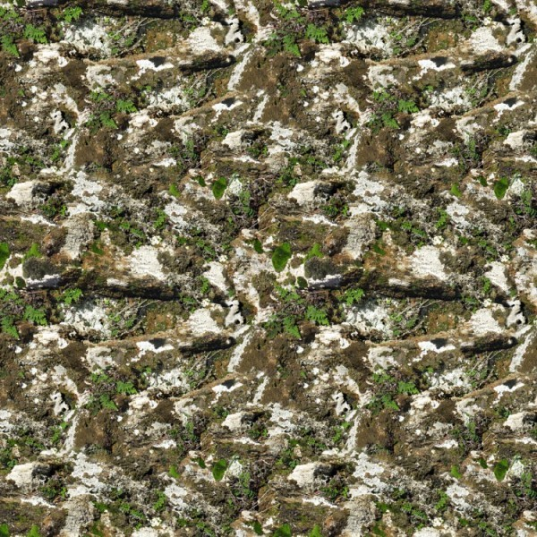 Hydrographic Films Mossy Rock 2 - mossy-rock-2