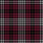 Clan Little Tartan Plaid