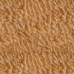 Quilted Maple Wood