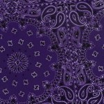Purple Bandanna
