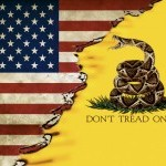 US and Gadsden Flag