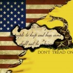 US/Gadsden/Second Amendment Flag