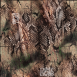 Hydrographic Film Dirt Road Camo - DRC-1M