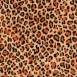 Hydrographic Film Pro Animal Film Sample Pack - large-animal-film-sample-pack Alternate Image 1